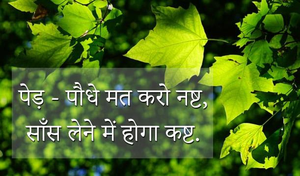 5 June World Environment Day