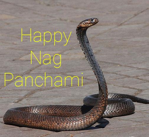 Happy Nag Panchmi