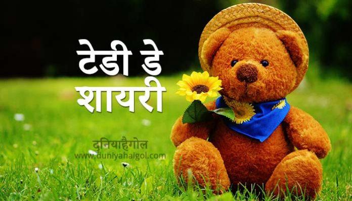 Teddy Day Shayari in Hindi