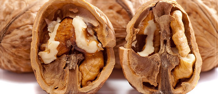 Walnuts Healthy Diet to Prevent Hair Fall