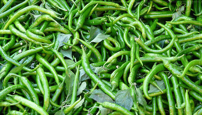Benefit of Eating Green Chillies