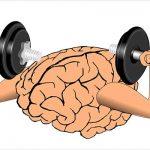 Foods to improve memory power