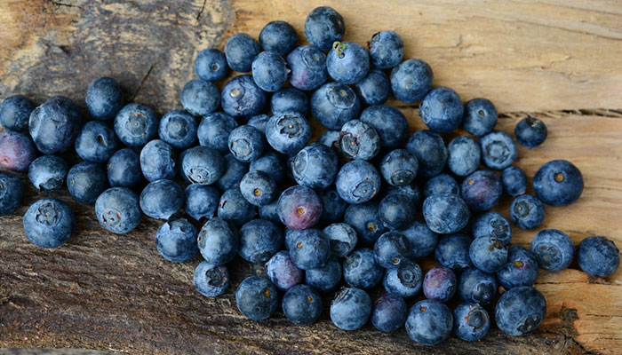 Foods to Improve Memory Power Blueberries
