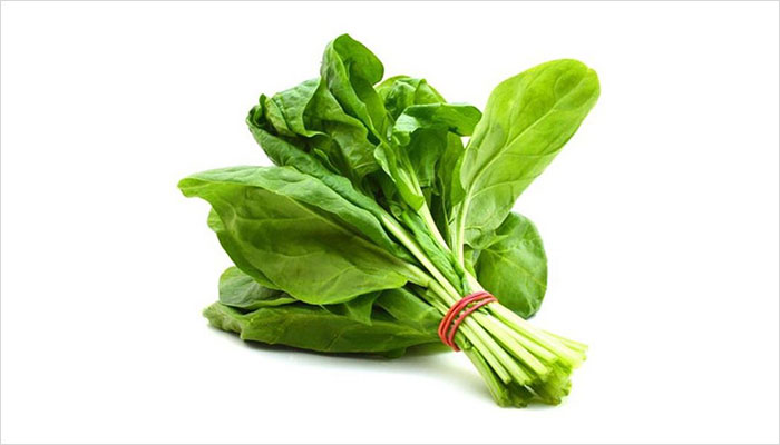 Foods to Improve Memory Power Palak
