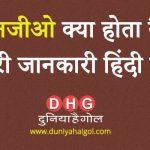 NGO in Hindi