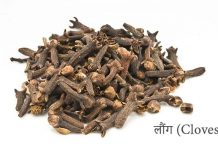Health Benefits Cloves in Hindi