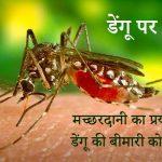 Slogans on Dengue in Hindi
