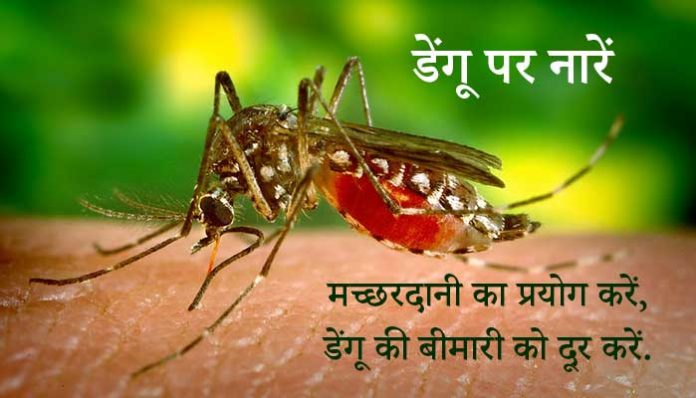 Slogans on Dengue in Hindi
