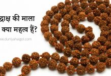 Rudraksh Benefits in Hindi