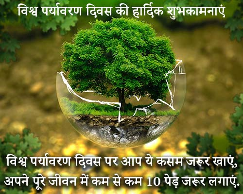 World Environment Day Shayari Image in Hindi