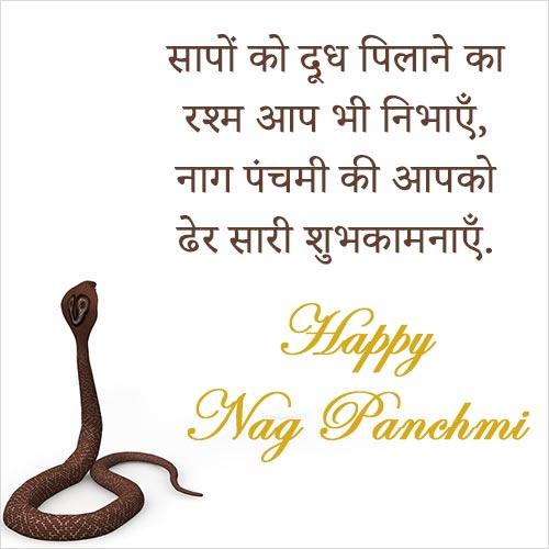 Happy Nag Panchmi Image