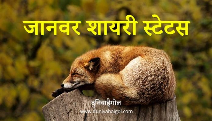 Animal Shayari Status Quotes