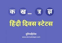 Hindi Diwas Status