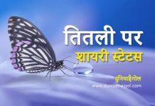 Butterfly Shayari