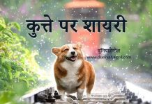 Dog Shayari