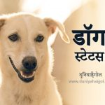 Dog Status in Hindi