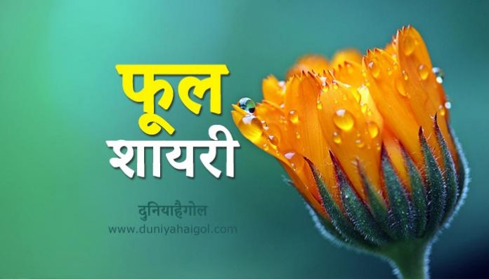 Flower Shayari