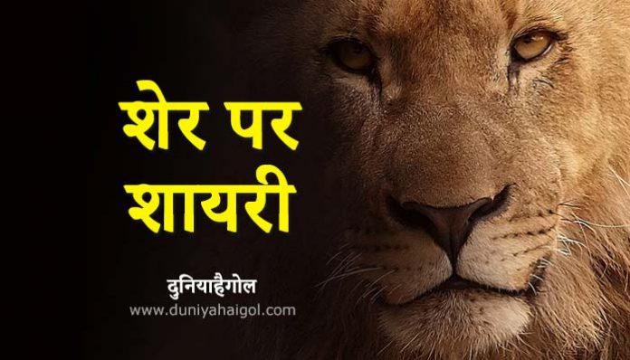 Lion Shayari