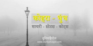 Fog Kohra Shayari Status Hindi