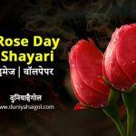 Rose Day Image Wallpaper in Hindi