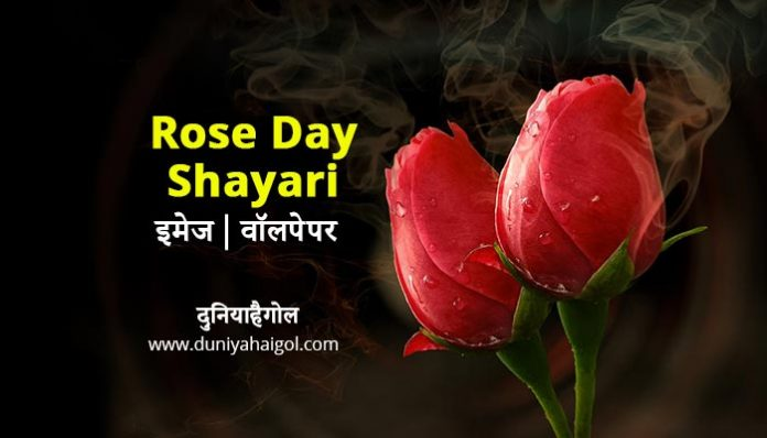 Rose Day Image Wallpaper in Hindi