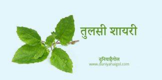 Tulsi Shayari Status