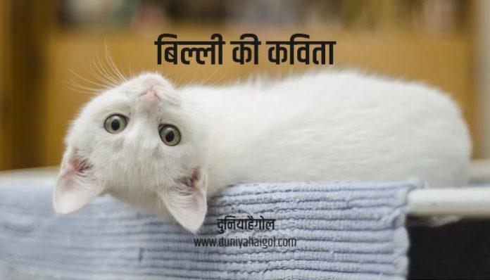 Cat Poem in Hindi
