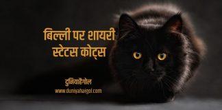 Cat Shayari Status Quotes Hindi