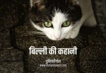 Cat Story in Hindi