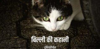Cat Story in Hindi
