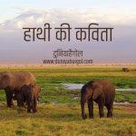 Elephant Poem in Hindi