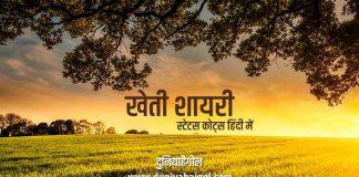 Kheti Shayari Status Quotes in Hindi