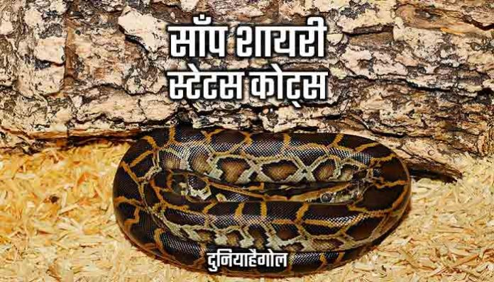 Snake Shayari Status Quotes Hindi
