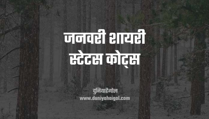 January Shayari Status Quotes Hindi