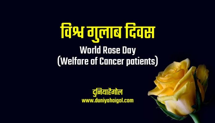 World Rose Day Shayari Status Quotes in Hindi