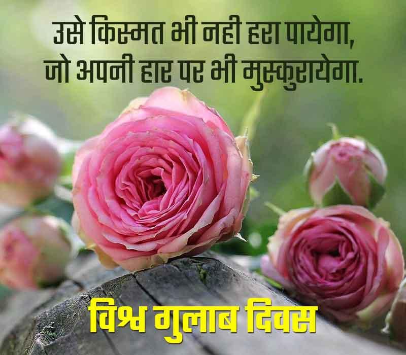 World Rose Day Status in Hindi