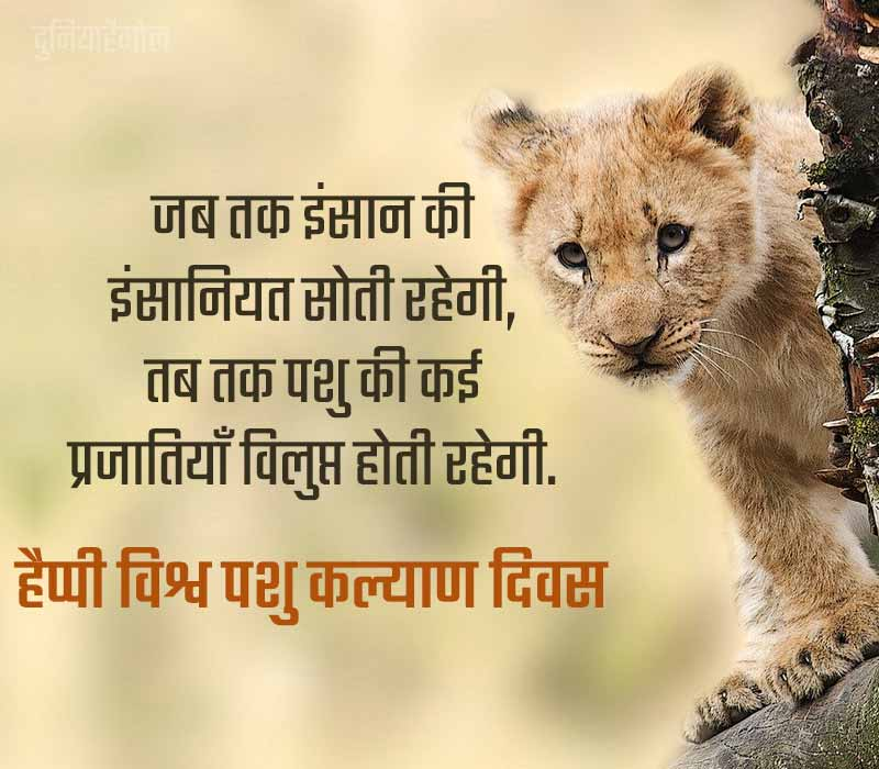 World Animal Day Shayari in Hindi