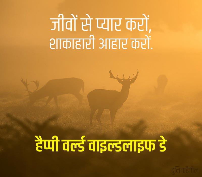 World Wildlife Day Status in Hindi