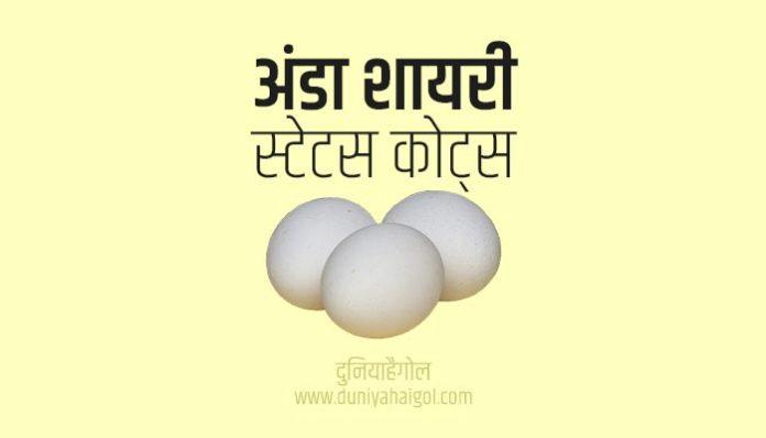 Egg Shayari Status Quotes in Hindi