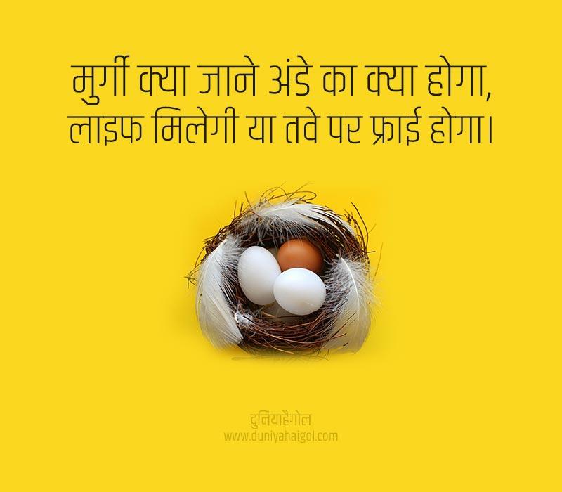 Egg Status in Hindi